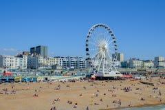 Riesenrad Brighton Großbritannien Stockbilder