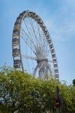 Riesenrad gelegen hinter den Bäumen stockbild