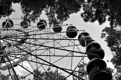 Riesenrad unter Baumasten Stockfoto