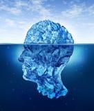 Riesgos del cerebro humano Imágenes de archivo libres de regalías