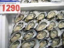Riesige Auster für Verkauf im Fischmarkt Stockfotos