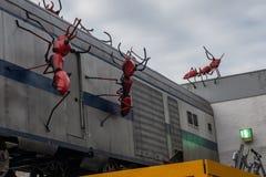 Riesige rote Ameisen, die einen Zug am Essig-Yard in Angriff nehmen lizenzfreie stockfotografie