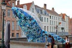 Riesiger Blauwal springt vom Kanal in Brügge heraus stockbilder