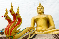 Riesiger Buddha und Drache Lizenzfreie Stockfotos