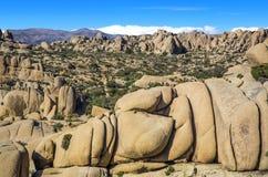 Riesiger Felsen in Joshua Tree National Park Lizenzfreie Stockfotografie