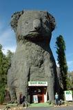 Riesiger Koala. stockbild