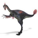 Riesiges Dinosaurier gigantoraptor lizenzfreie abbildung