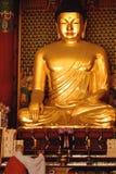 Riesiges Gold Buddha Lizenzfreies Stockbild
