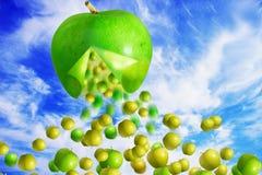 Riesiges grünes Apfelfallen Stockfotos