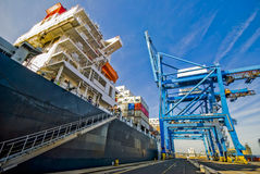 Riesiges Schiff machte im Containerhafen in Großbritannien während der Frachtübergangsoperation fest Stockbilder