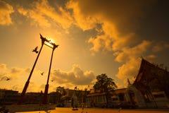 Riesiges Schwingen im Sonnenuntergang stockbild
