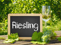 Riesling wine glass and sign Stock Images