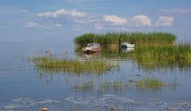 Rieteiland en boten het meer, van Peipus (Chudskoe), Estland royalty-vrije stock afbeelding