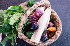 Rieten het winkelen mand verse groenten en opbrengst bij een landbouwbedrijf stock fotografie
