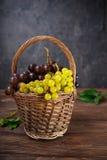 Rieten mand met diverse druiven: rode, witte en zwarte bessen op de donkere houten lijst Selectieve nadruk De ruimte van het exem Royalty-vrije Stock Fotografie