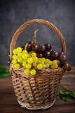 Rieten mand met diverse druiven: rode, witte en zwarte bessen op de donkere houten lijst Selectieve nadruk De ruimte van het exem Stock Afbeelding