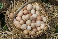 Rieten mand met eieren Royalty-vrije Stock Afbeeldingen