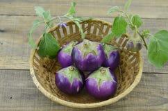Rieten mand met purpere aubergines op houten lijst, close-up royalty-vrije stock afbeeldingen