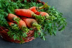 Rieten mand met rijpe wortelen op de lijst stock afbeelding