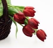 Rieten mand met rode tulpen Stock Fotografie