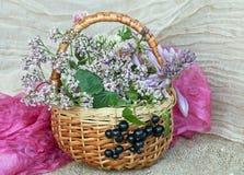 Rieten mand met wilde bloemen Royalty-vrije Stock Foto