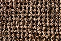Rieten naadloze textuur Stock Fotografie