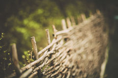 Rieten omheining, de omheining Stock Foto