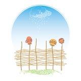 Rieten omheining van osier takken met het hangen van ceramische potten op de lichtblauwe achtergrond met regenachtige wolk Stock Afbeelding