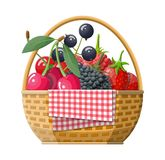 Rieten picknickmand met bessen vector illustratie