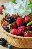 Rieten plaat met de bosbessen, de aardbeien, de frambozen en de braambessen van assortimentsbessen Rustieke stijl Stock Afbeelding