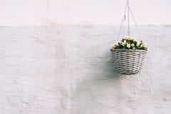 Rieten pot met gele bloem stock afbeeldingen