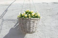 Rieten pot met gele bloem stock foto