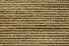 Rieten Textuur Stock Foto