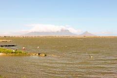 Rietvlei dans la réserve naturelle de baie de Tableau avec la montagne de Tableau à l'arrière-plan, Cape Town, Afrique du Sud Image stock