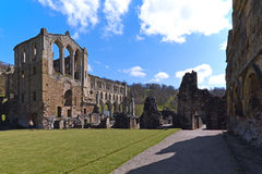 Rievaulx Abbey Grounds Royaltyfri Bild