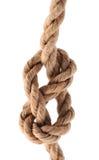 Riff-Knoten Stockbild