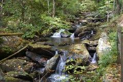Riffles at Anna Ruby Falls creek Royalty Free Stock Photos