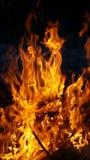 Rifiuti brucianti dell'iarda Fotografia Stock Libera da Diritti