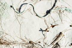 Rifiuti lavati su sulla spiaggia di sabbia bianca Immagini Stock