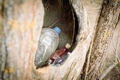 rifiuti nella cavit? vuota di un albero la natura perisce concetto di protezione di natura, ecologia La plastica imbottiglia la f immagini stock