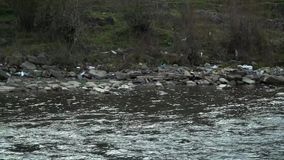 Rifiuti sul fiume Immondizia in un fiume della montagna Inquinamento ambientale Inquinamento della natura Catastrofe ecologica stock footage