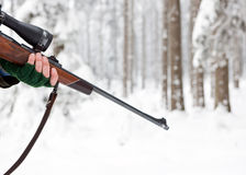 Free Rifle Stock Photography - 12603152