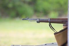 Rifle Fotografia de Stock Royalty Free