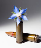 Rifle bullet and a flower bullet Stock Photo