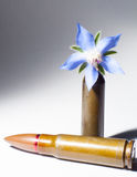 Rifle bullet and a flower bullet Stock Photography