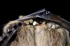 Rifle and cartridges. Studio close-up of a shotgun with a wooden stock, leather belt and cartridges draped over an animal skin Royalty Free Stock Images