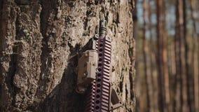 Rifle de asalto colocado al lado de un árbol en el bosque metrajes