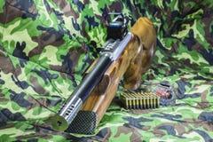 Rifle del perno de la carabina de 22 LR Imagen de archivo libre de regalías