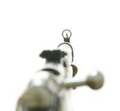 Rifle dos mosin russian antigos Imagens de Stock Royalty Free
