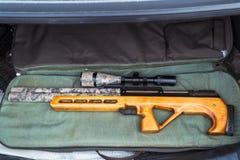 Rifle neumático con una vista óptica Foto de archivo